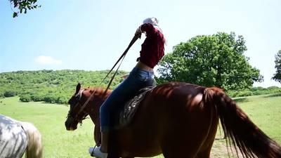 horsin around